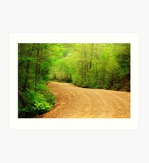 Spring Country Road Art Print