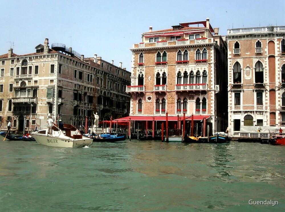 IL PALAZZO E LA SUA STORIA  - ITALY --- EUROPA -   2500 visualizzaz. maggio 2013 - VETRINA RB EXPLORE 29 MARZO 2012--- by Guendalyn
