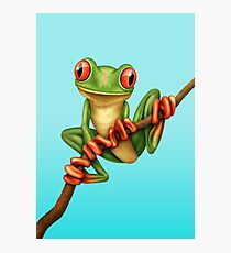 Cute Green Tree Frog on a Branch Photographic Print