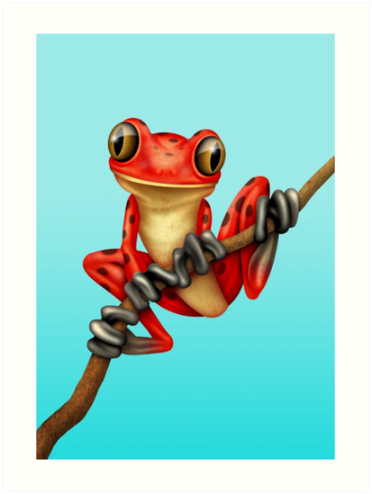 Cute Red Tree Frog on a Branch by jeff bartels