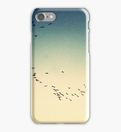 Southern Migration iPhone Case/Skin
