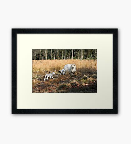Proud Mom with her Little Lamb Framed Print