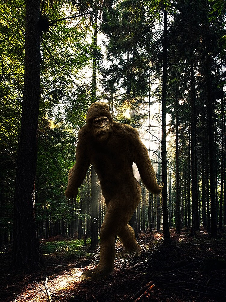 Squatch by ☼Laughing Bones☾