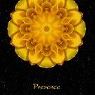 Presence II by Karen Casey-Smith