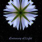 Emissary of Light Mandala II by Karen Casey-Smith