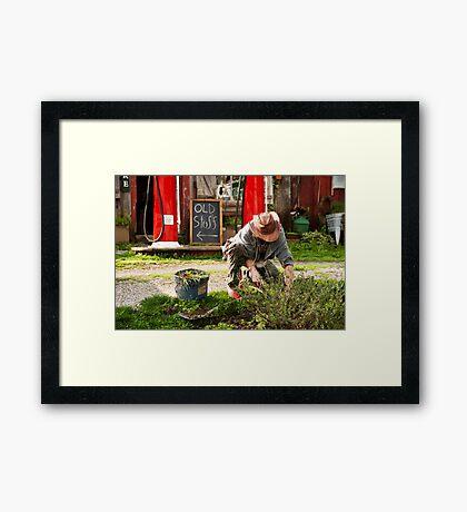 The Garden Artisan Framed Print