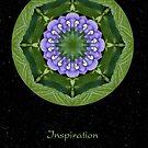 Inspiration II by Karen Casey-Smith