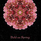 Bold as Spring II by Karen Casey-Smith