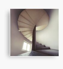 Spiral frontal Canvas Print