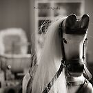 Rocking Horse by Karen E Camilleri