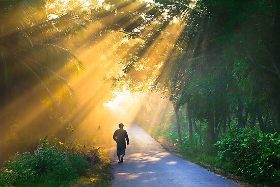 Showering rays  by Dinni H