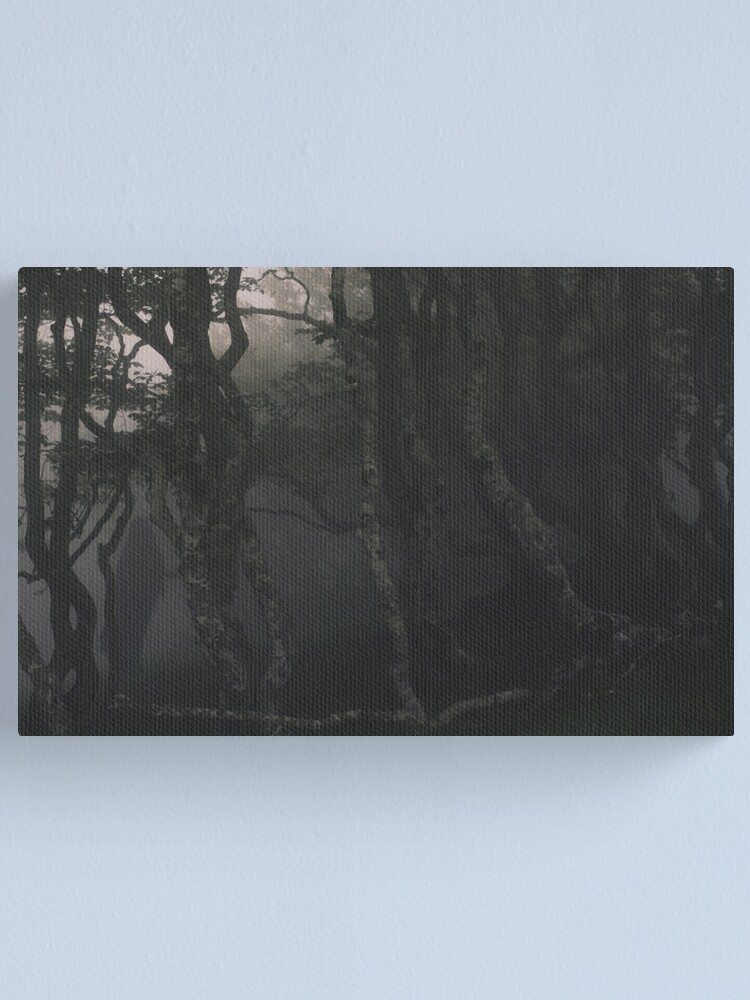 Alternate view of SULDR & LAMINA Canvas Print