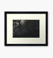 SULDR & LAMINA Framed Print