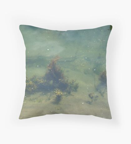 Underwwater Garden Throw Pillow
