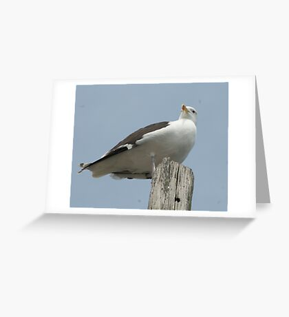 Do I See Lunch Coming? Greeting Card