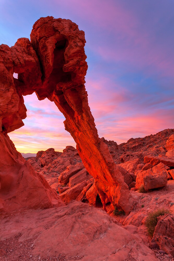 Elephant Rock Morning Glow by James Marvin Phelps
