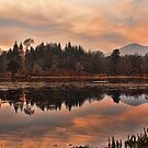 Sunset Over The High Pond by Lynne Morris