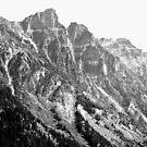 Canadian Rockies, 2015 by Elfriede Fulda