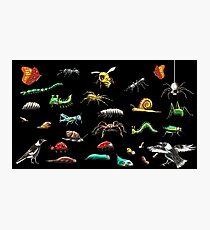 Creatures wallpaper Photographic Print