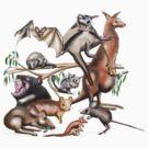 Aussie Fauna by David Fraser