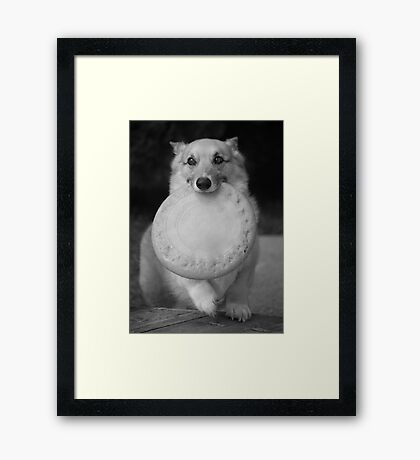 """""""Will You Play With Me ? """" Framed Print"""