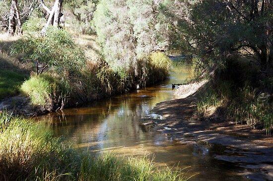 Little River by Rocksygal52