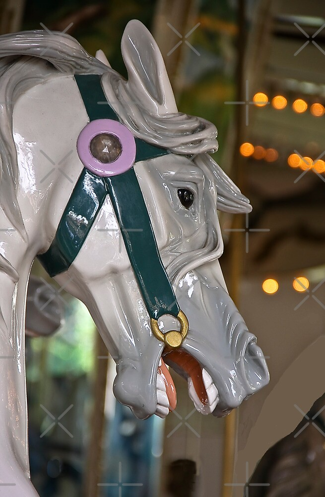 Carousel Horse 1895  by Heather Friedman