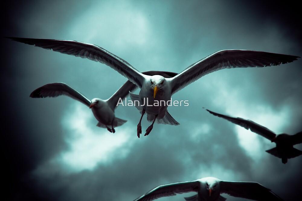 Sea Gulls - Renard by AlanJLanders