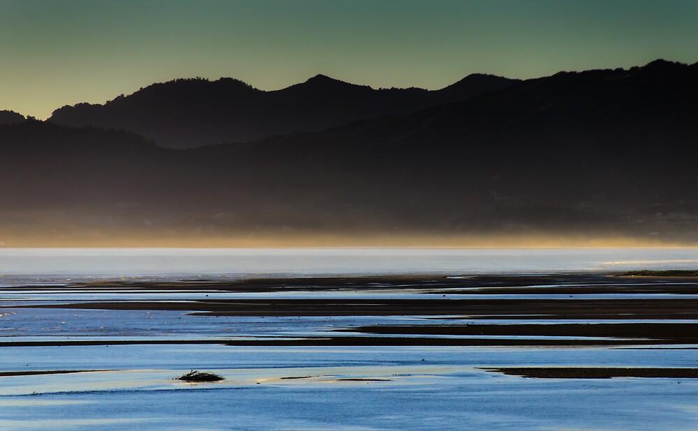 Dawn by wolfcat