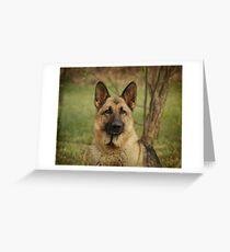 Yahtzee--German Shepherd Greeting Card