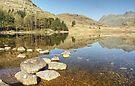 Blea Tarn, March 2012 by Jamie  Green