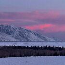 Grand Teton Winter Morning by Stephen Vecchiotti