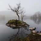 Rydal Water by Brian Kerr