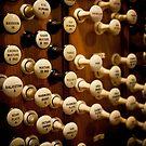 Pipe organ stops by Jenny Setchell