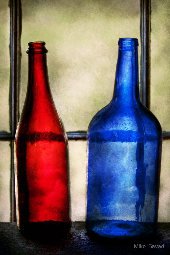 Collector - Bottles - Two empty wine bottles  by Michael Savad