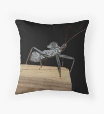 Assassin bug  Throw Pillow