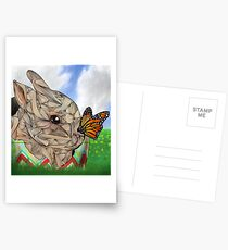 Bunny and Butterfly Postcards
