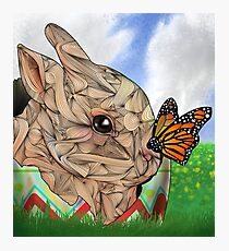 Bunny and Butterfly Photographic Print