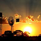 """Outback Sunset"" by Sue  Fellows"