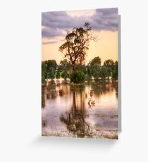 Solitary , Junee, NSW Australia - The HDR Experience Greeting Card