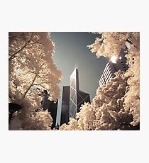 Bank of China Photographic Print