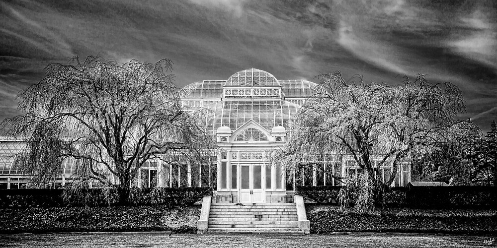 Enid A Haupt Conservatory, NY Botanical Garden  by Chris Lord