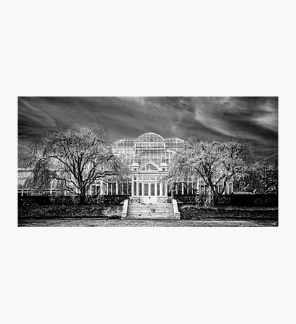 Enid A Haupt Conservatory, NY Botanical Garden  Photographic Print