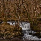 Colwith Falls, Lake District by JMChown