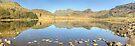 Blea Tarn, A Panoramic View by Jamie  Green