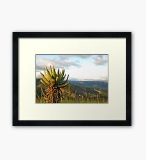 and down to the ezulwini valley Framed Print