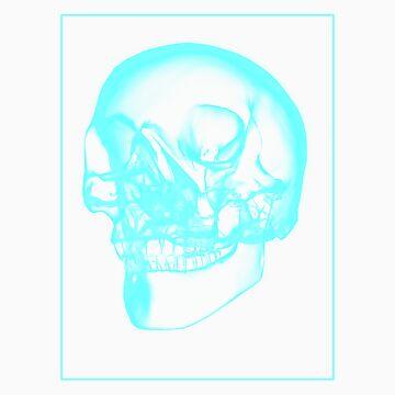 Skull Xray F by noelr7
