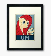 UM Framed Print