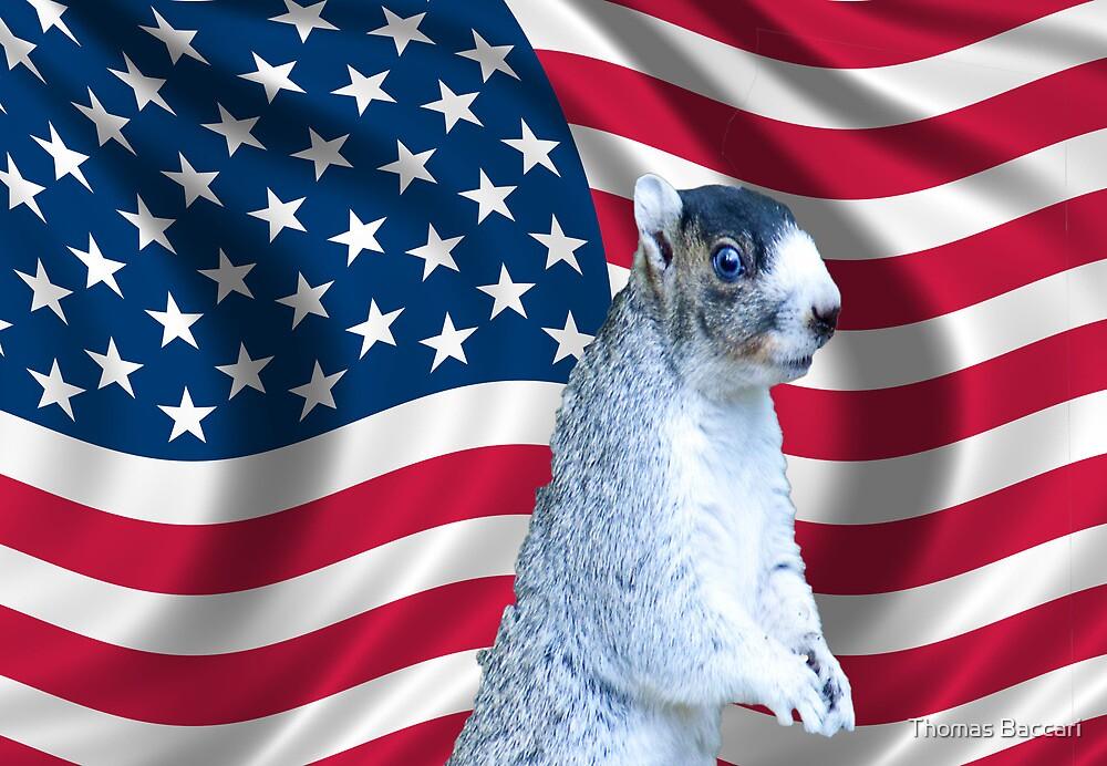 I love America by TJ Baccari Photography