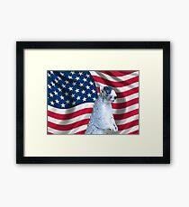 I love America Framed Print